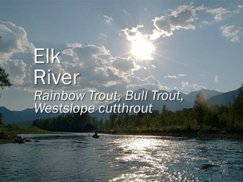 british columbia fly fishing trips
